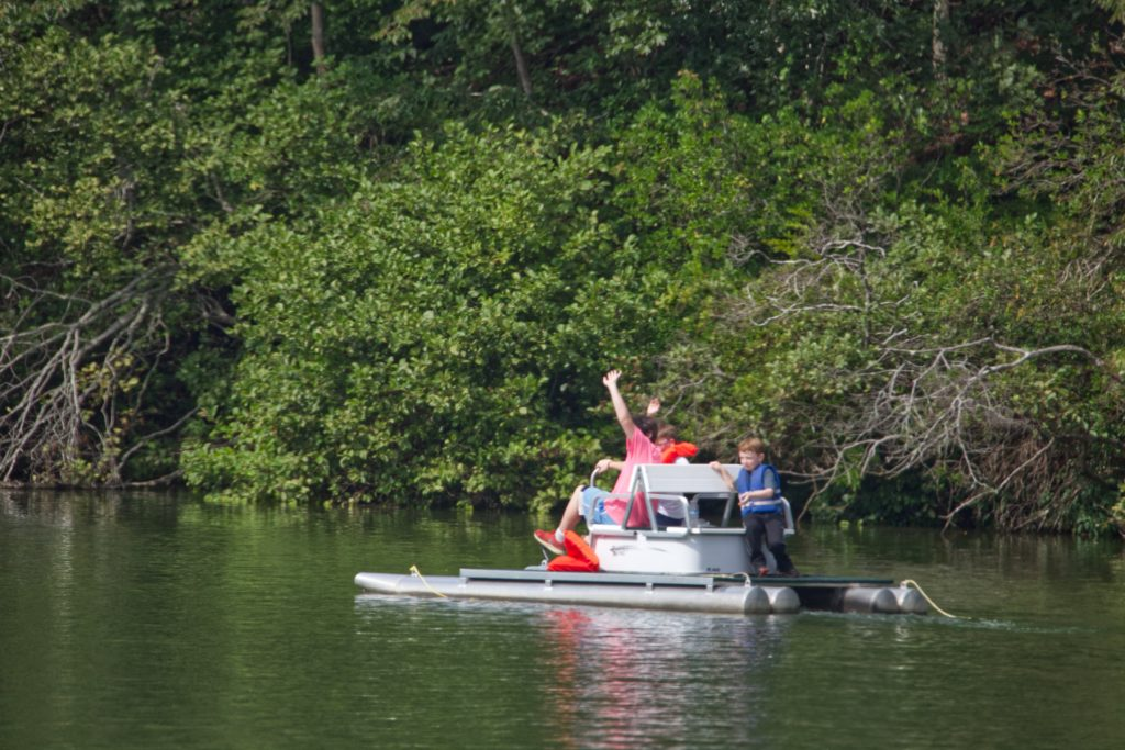 Paddle boats in david crockett park.